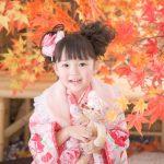 七五三の前撮りはおしゃれ写真館で!東京のおすすめ写真館と選ぶポイントをご紹介